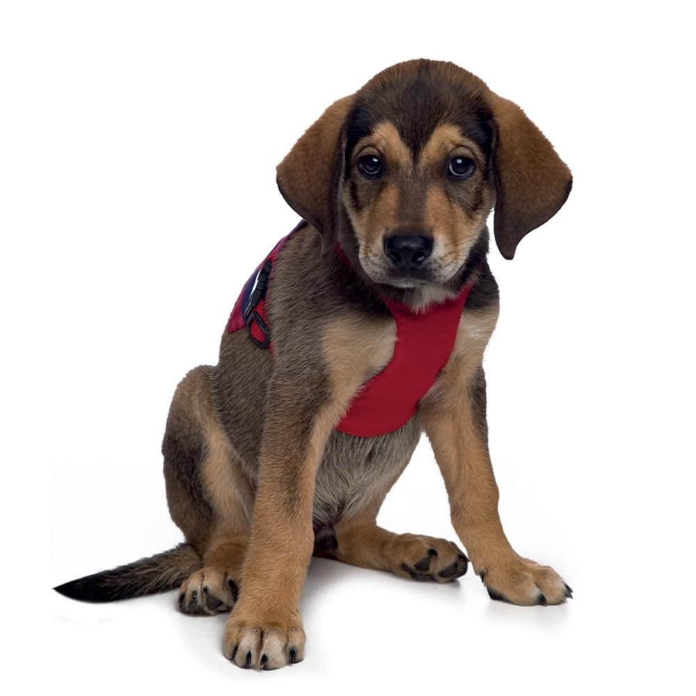 Peitoral para cachorro de Caranguejo, P ao G