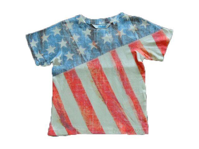 Camiseta Bandeira Estados Unidos Importada