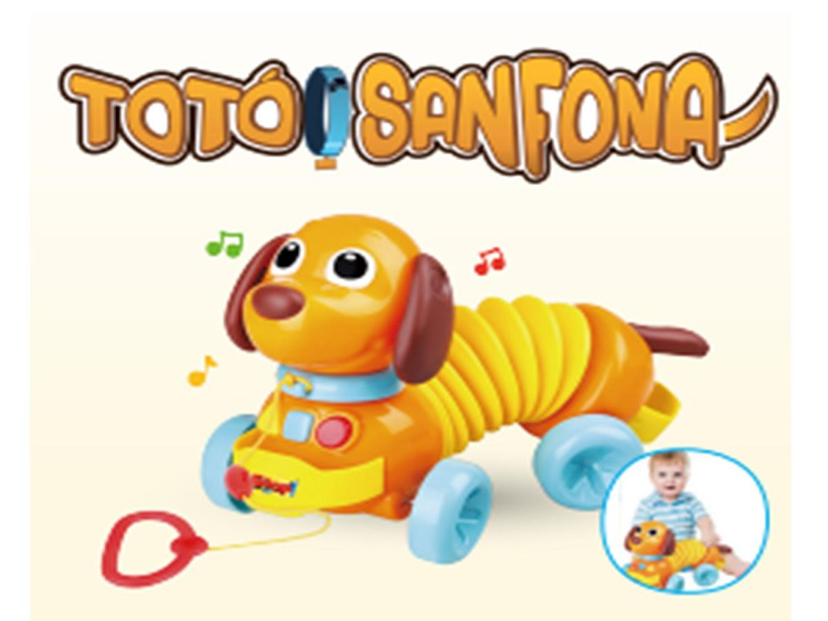Toto Sanfona Zoop Toys ZP00246