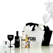 KIT Amantes do Gin