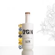 GIN O'GIN LONDON DRY 700ml
