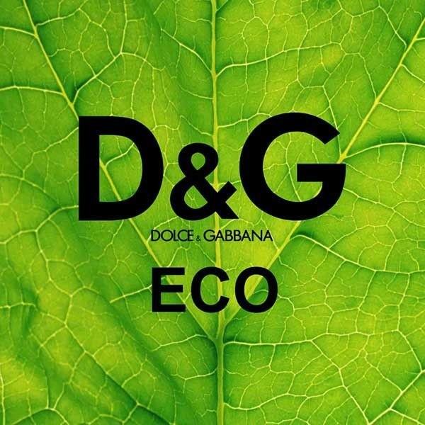 Essência Aroma Feminina DG ECO (Direção Olfativa DOLCE & GABANNA ECO) 50ml