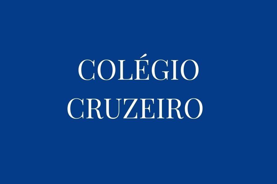 DICIONÁRIO ESCOLAR - INGLÊS / INGLÊS -