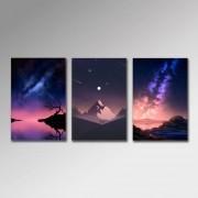 Placa Decorativa - Constelações