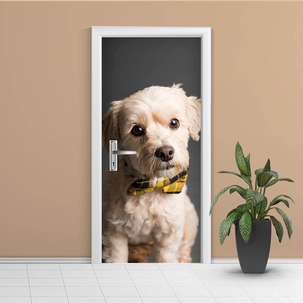 Adesivo de Porta Cachorro 4