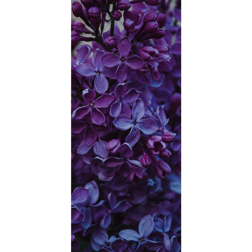 Adesivo de Porta Floral 1