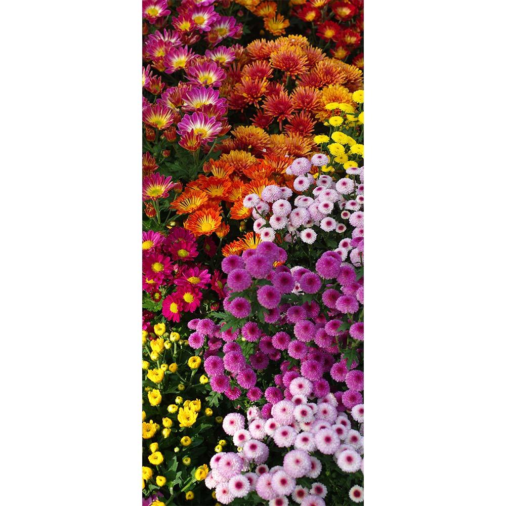 Adesivo de Porta Floral 8