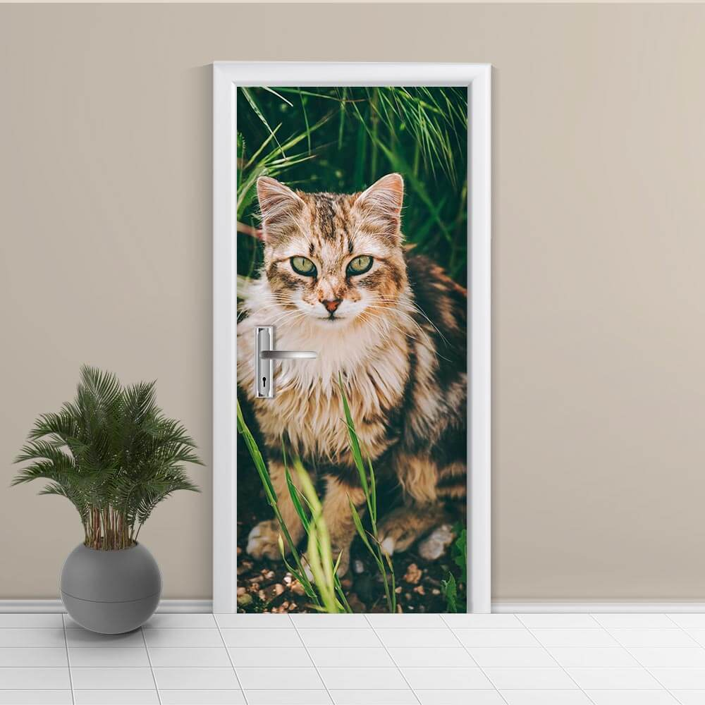 Adesivo de Porta Gato 4