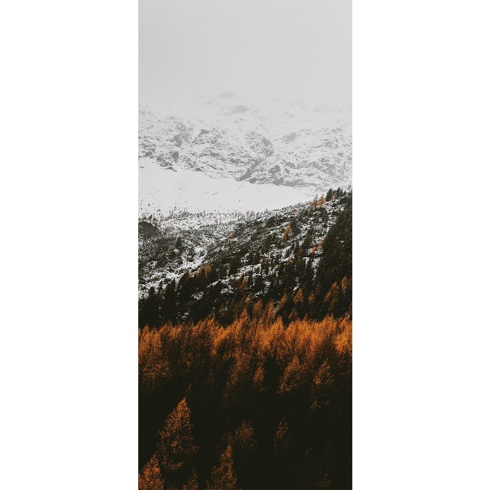 Adesivo de Porta Inverno 7