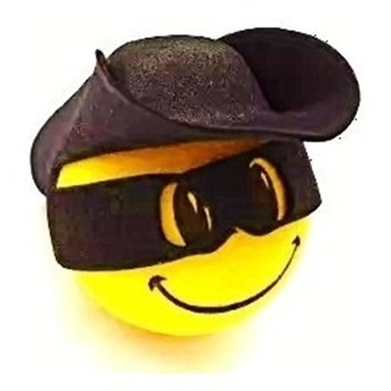 Enfeite de Antena Zorro
