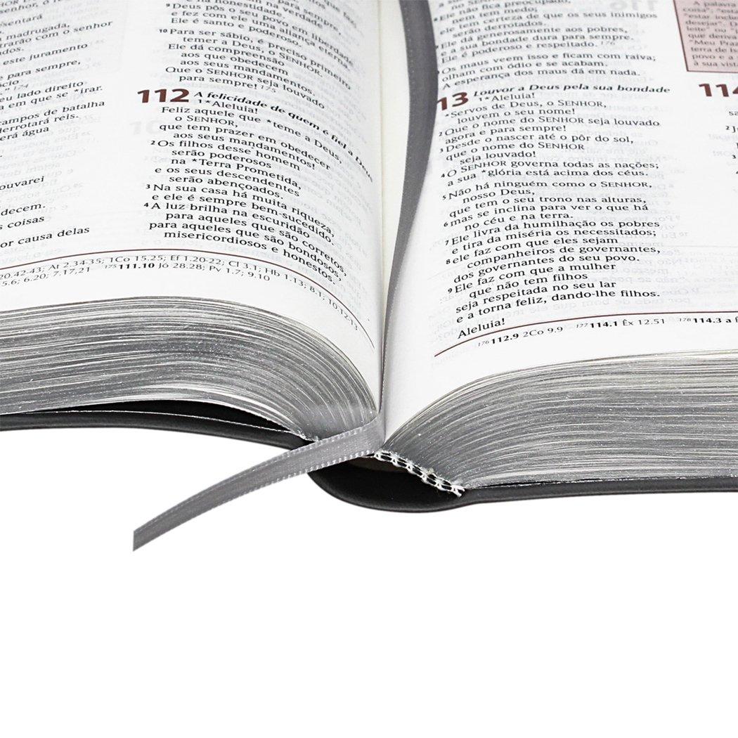 Bíblia de Estudo Plenitude para Jovens - Capa Preta
