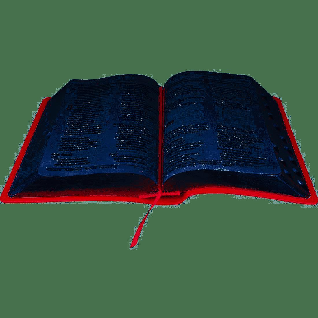 Bíblia Nova Almeida Atualizada Letra Grande - Com Índice Capa Pêssego