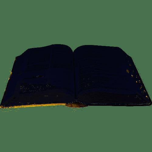 Bíblia Nova Almeida Atualizada Letra Grande - Com Índice Capa Reflexo
