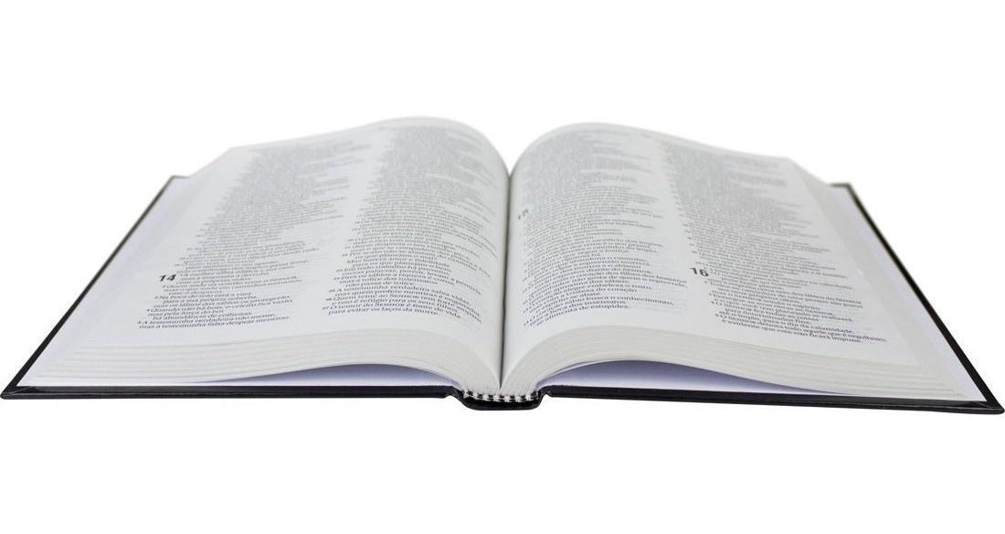 Bíblia Sagrada Capa Dura - Nova Almeida Atualizada - Leão Da Tribo De Judá