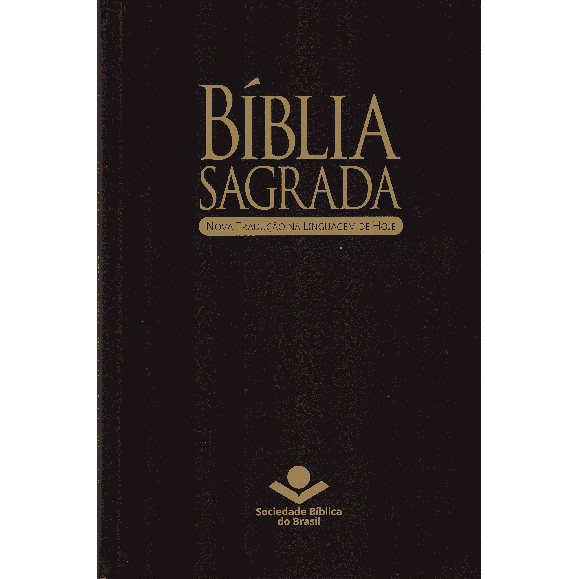 Bíblia Sagrada Capa Dura Nova Tradução na Linguagem de Hoje