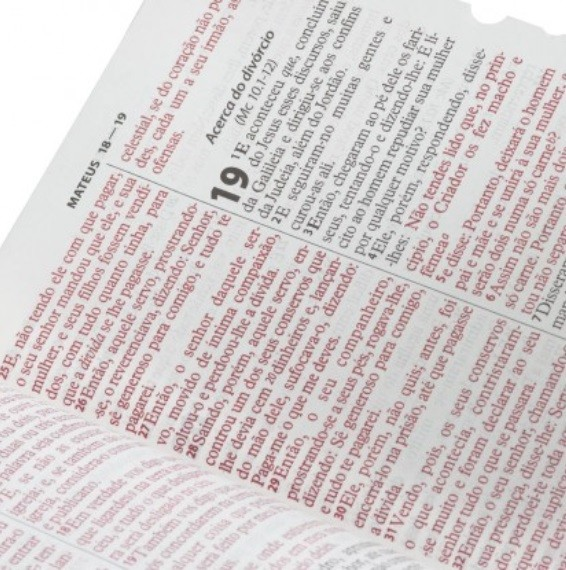 Bíblia Sagrada Letra Gigante Com Índice - Capa Rosa Claro Luxo - Tradução Almeida Revista e Corrigida