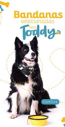 toddy e suas bandanas