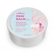 Bálsamo Hidratante para Patinhas - Paw Balm - VetFleur