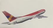 Adesivo 787 Avianca