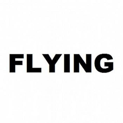Adesivo Plotter - Flying Preto