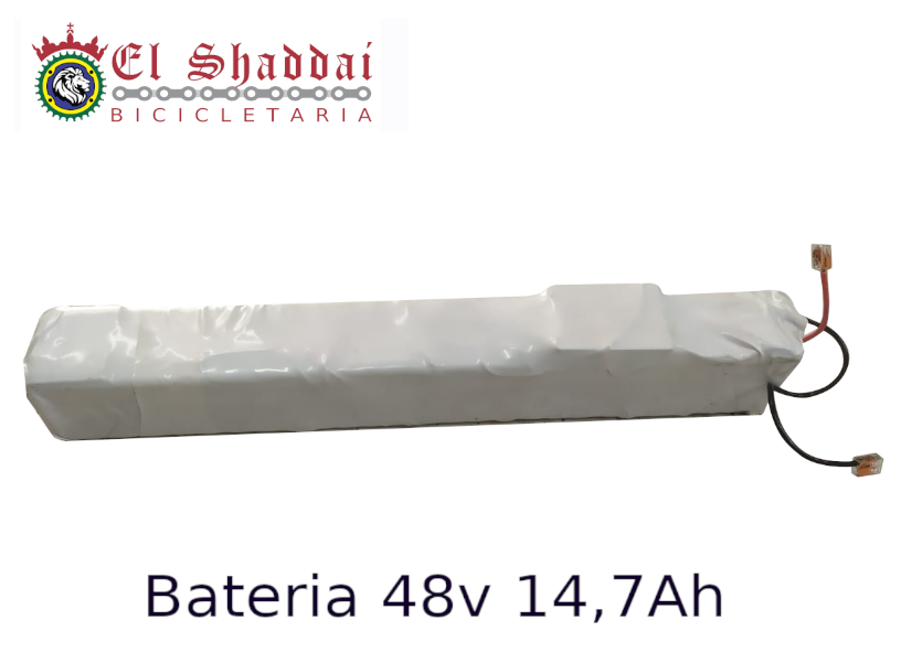 BATERIA DE LITIO 48V 14,7 AH