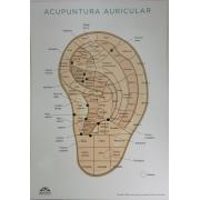 Mapa Acupuntura Auricular - Marcos Lisboa - A4