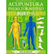 Microssitema da Acupuntura Pulso-Tornozelo