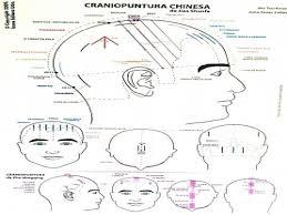 Mapa Craniopuntura Japonesa e Chinesa - A4