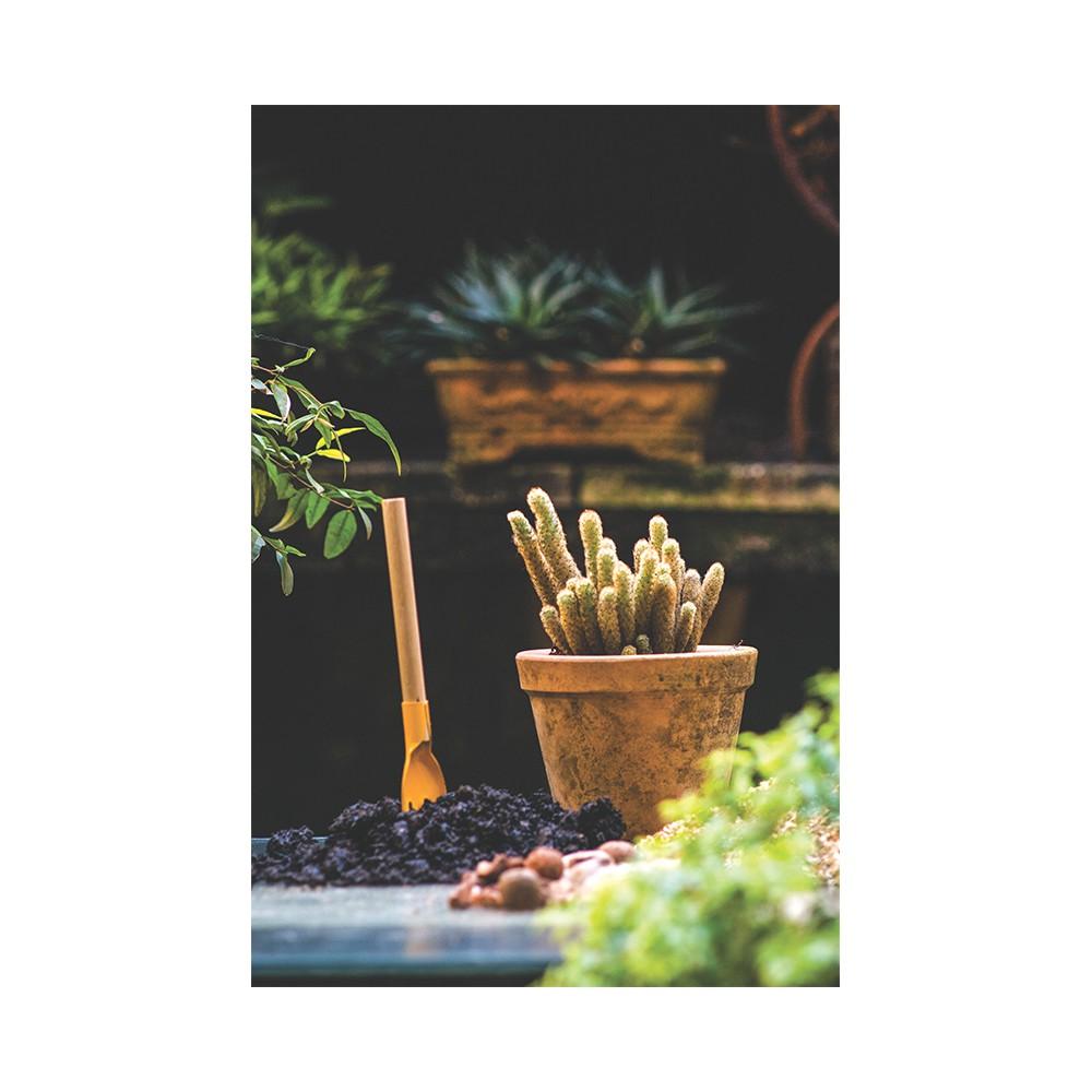 Kit de ferramentas Tramontina para jardinagem
