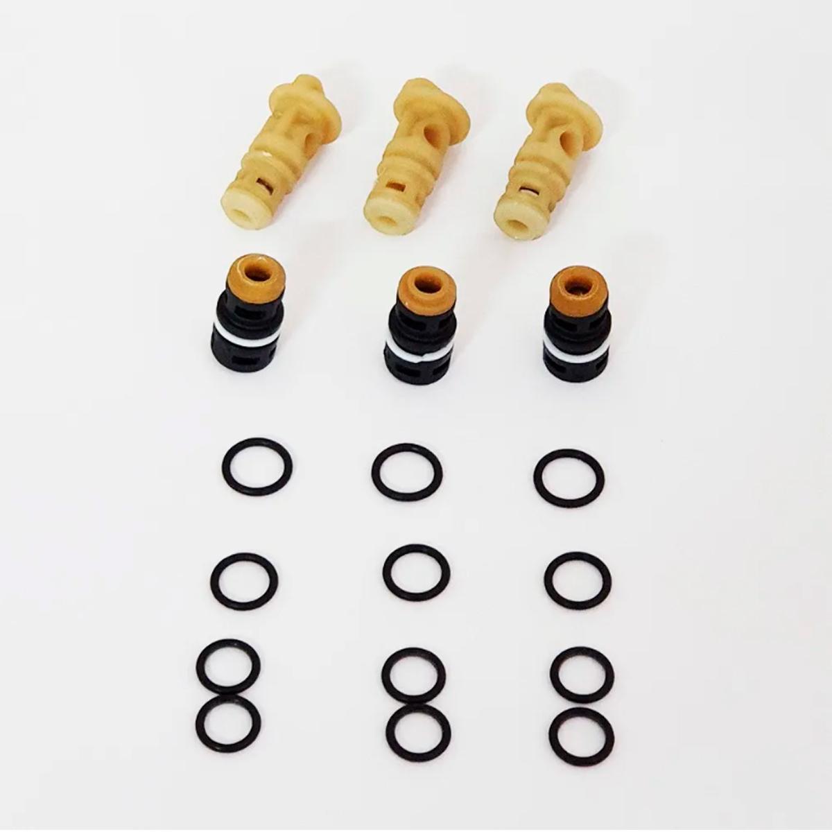 Kit Válvulas para Lavadora Oleo-Mac PW136 18pçs Original