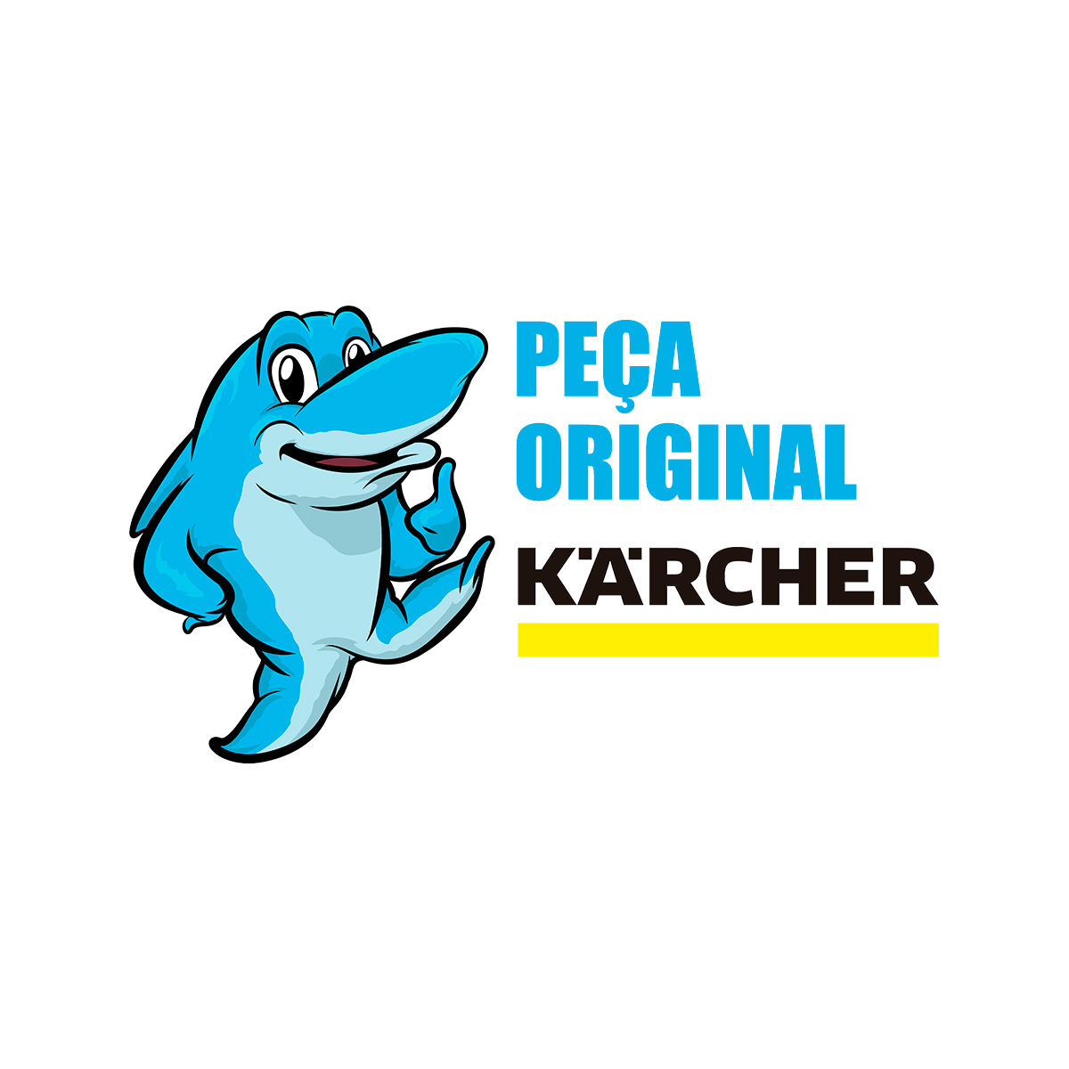 Stop Total By Pass Lavadora Karcher K2 Completo Original
