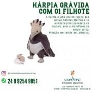 HARPIA COM FILHOTE