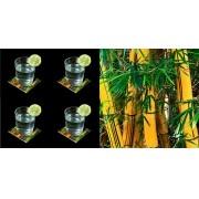 Bambu - Conjunto com 4 porta copos
