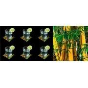 Bambu - Conjunto com 6 porta copos