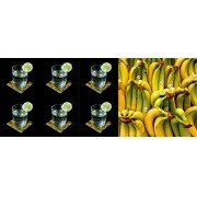 Tropical -Conjunto com 6 porta copos