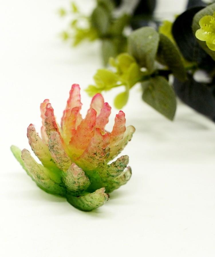 Molde Silicone Cactus Estrela