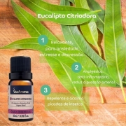 Kit Ansiedade 4 Óleos Essenciais 100% Natural Puro 10ml Via Aroma
