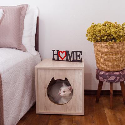 Casinha de Gato Tipo Mesinha com Entrada Desenho Gatinho - Alto Padrão