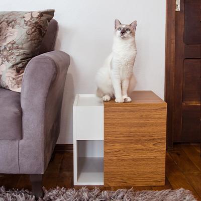 Casinha de Gato Tipo Mesinha com Ripado Lateral - Alto Padrão