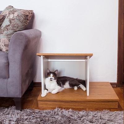 Casinha Sweet Home para Cachorro ou Gato - Alto Padrão