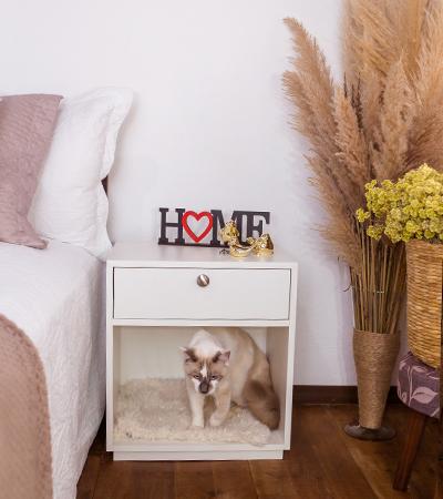 Mesa de Cabeceira com Caminha para Pet - Alto Padrão