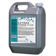 Desinfetante Bactericida Power Plus Pronto Uso 5L ESTÈRA