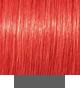 Schwarzkopf Igora Royal 0-88 Concentrado Vermelho 60g
