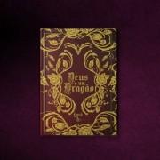 Livro Deus é um Dragão