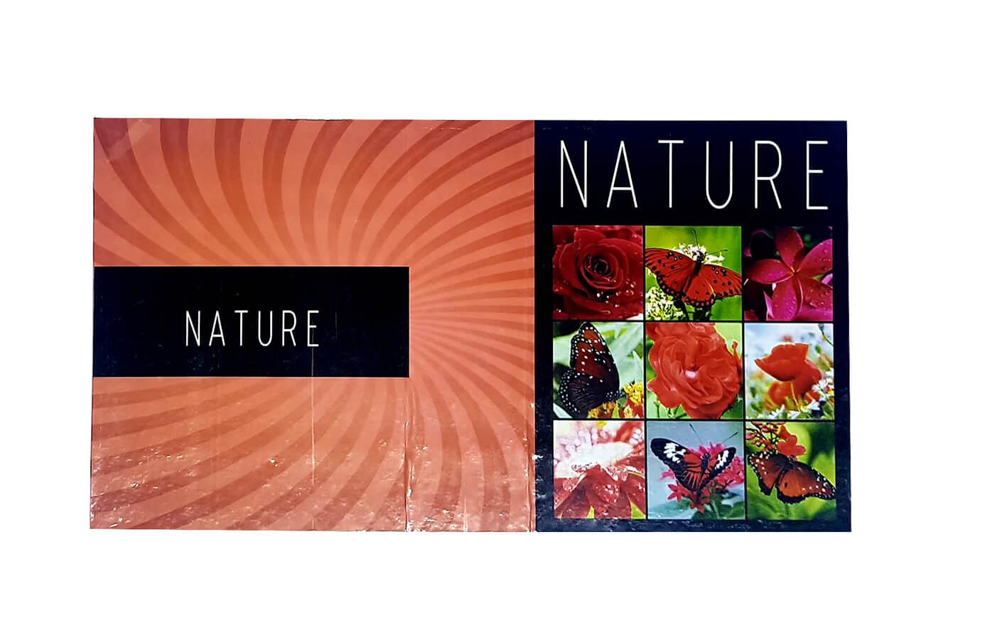 1 Álbum de fotos Fotografias  10 X15 120 Fotos NATURE