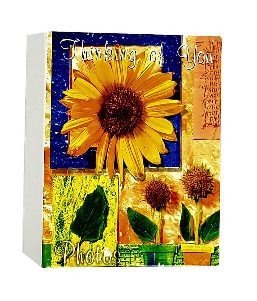 1 Álbum de fotos Fotografias  10 X15 120 Fotos Flores