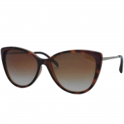 Óculos de Sol Grazi Feminino GZ4029