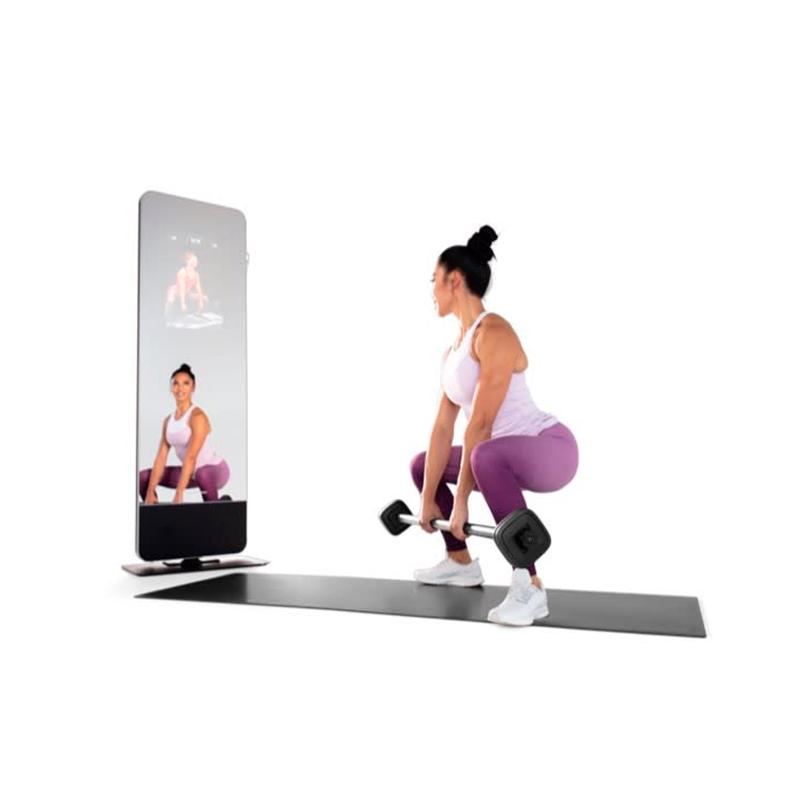 Painel Personal Espelho Fitness ProForm Vue