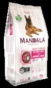 Alimento seco Mandala Premium Especial - Cães Adultos - Raças Médias e Grandes - Cordeiro e Arroz