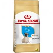 Alimento seco Seca Royal Canin Puppy Pug para Cães Filhotes